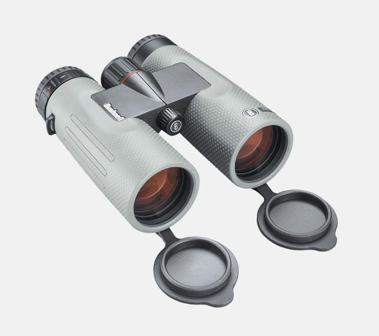 Bushnell Nitro 10x42 Binoculars Gunmetal Grey