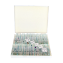 saxon Prepared Biological Microscope Slides (100pc)