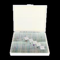 saxon Prepared Biological Microscope Slides (100pc)